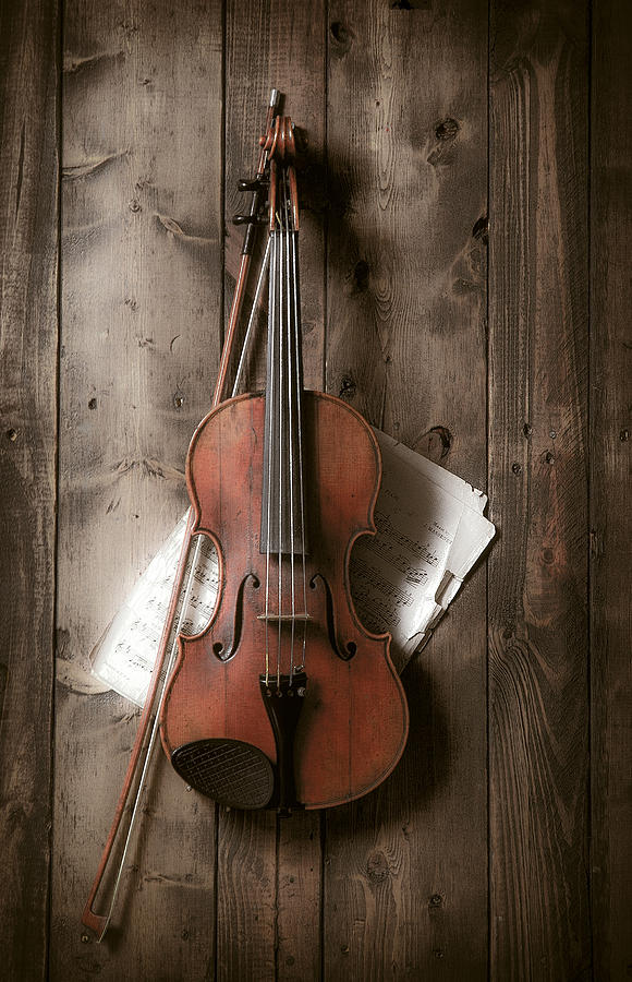 Violin Photograph  - Violin Fine Art Print