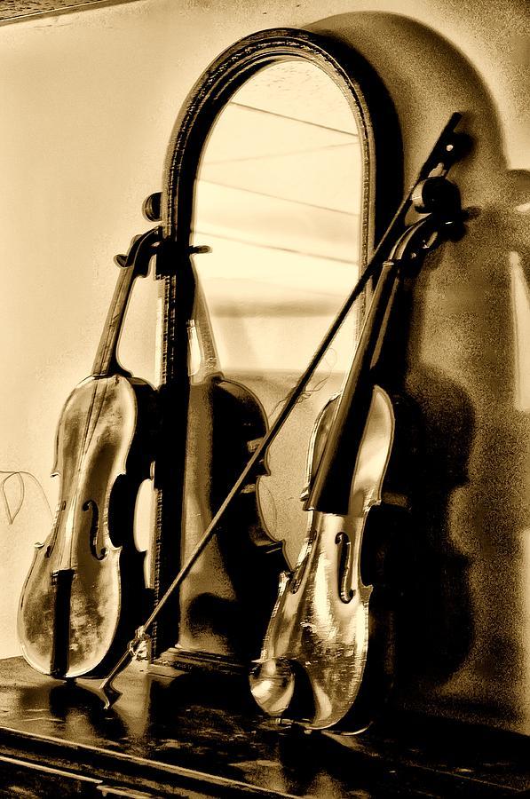 Violins Photograph