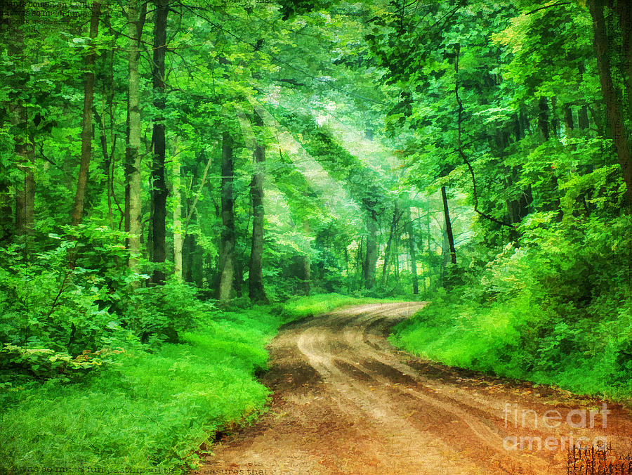 Virginia Back Roads is a photograph by Darren Fisher which was ...