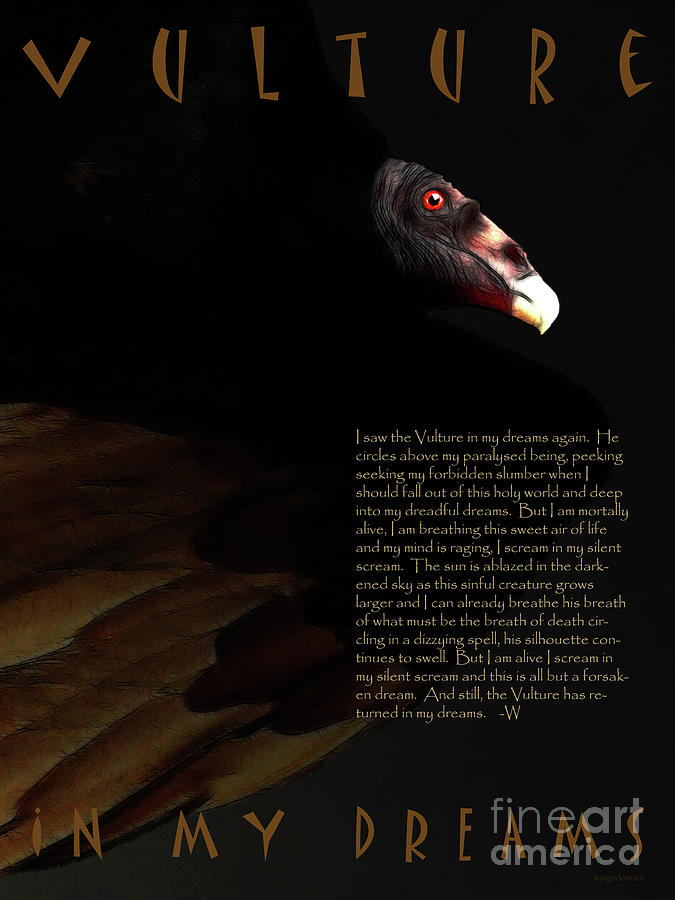Vulture In My Dreams . With Prose Photograph  - Vulture In My Dreams . With Prose Fine Art Print