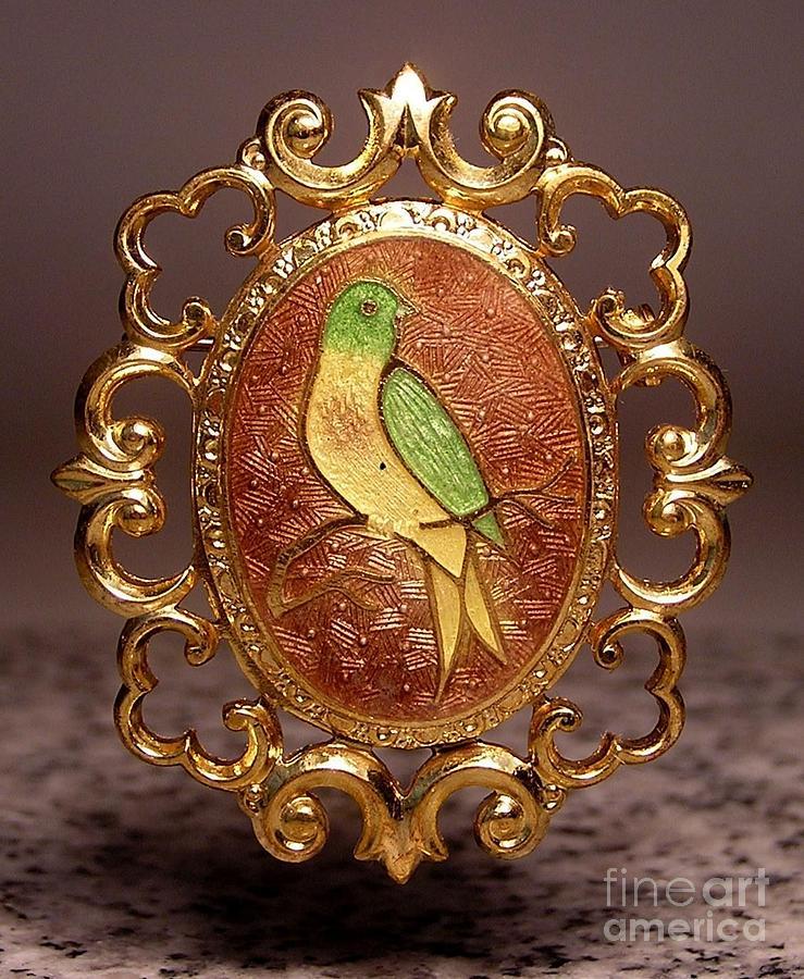 Enamel Jewelry Jewelry - W1 5 by Dwight Goss