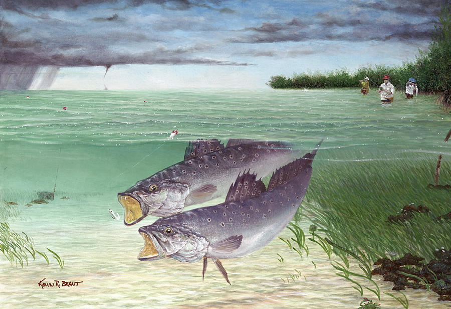 Wade Fishing For Speckled Trout Painting  - Wade Fishing For Speckled Trout Fine Art Print