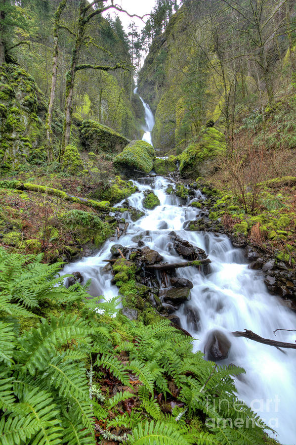 Wahkeena Falls Oregon Waterfall Photograph  - Wahkeena Falls Oregon Waterfall Fine Art Print