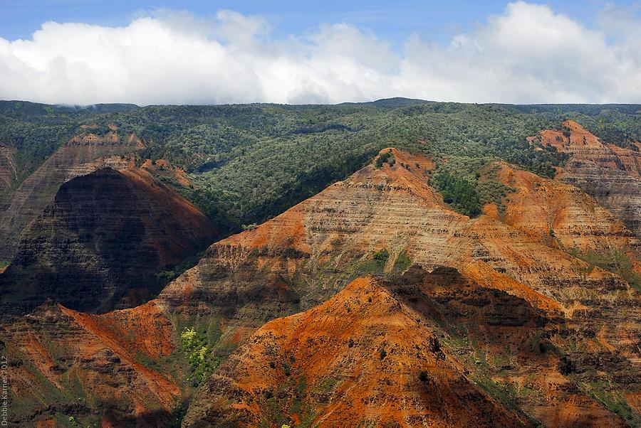 Waimea Canyons Photograph