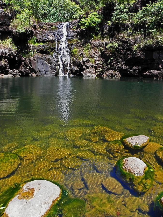 Waimea Falls Photograph