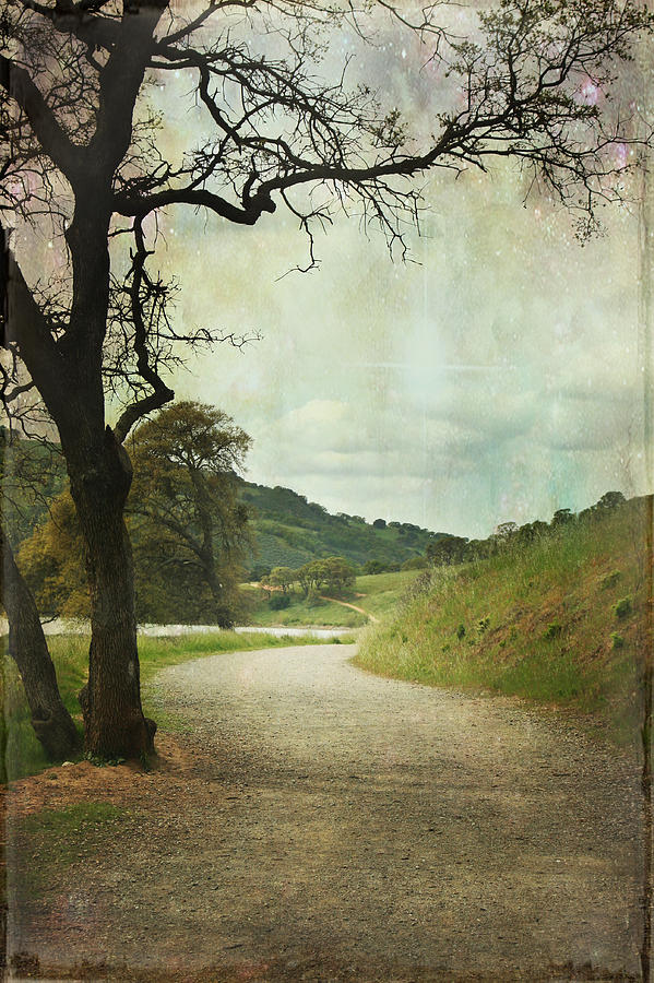 Walk Of Life Photograph  - Walk Of Life Fine Art Print