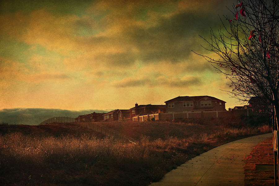 Path Photograph - Walking Alone by Laurie Search