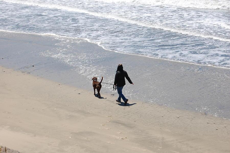 Walking The Dog Photograph