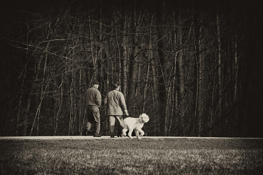Friends Photograph - Walking The Dog by Off The Beaten Path Photography - Andrew Alexander