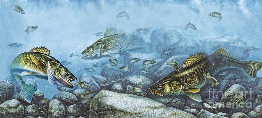 Walleye Reef Painting