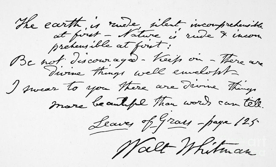 walt whitman writing style