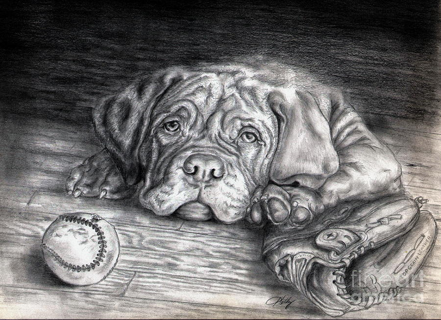 Dog Drawing - Want To Play by Kathleen Kelly Thompson