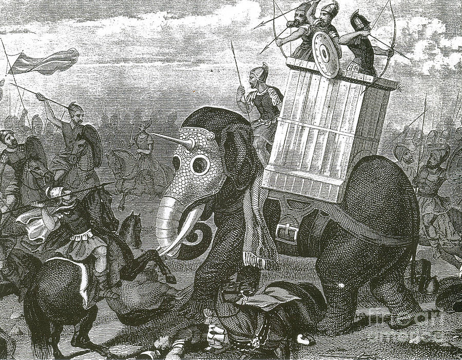 War Elephant Photograph