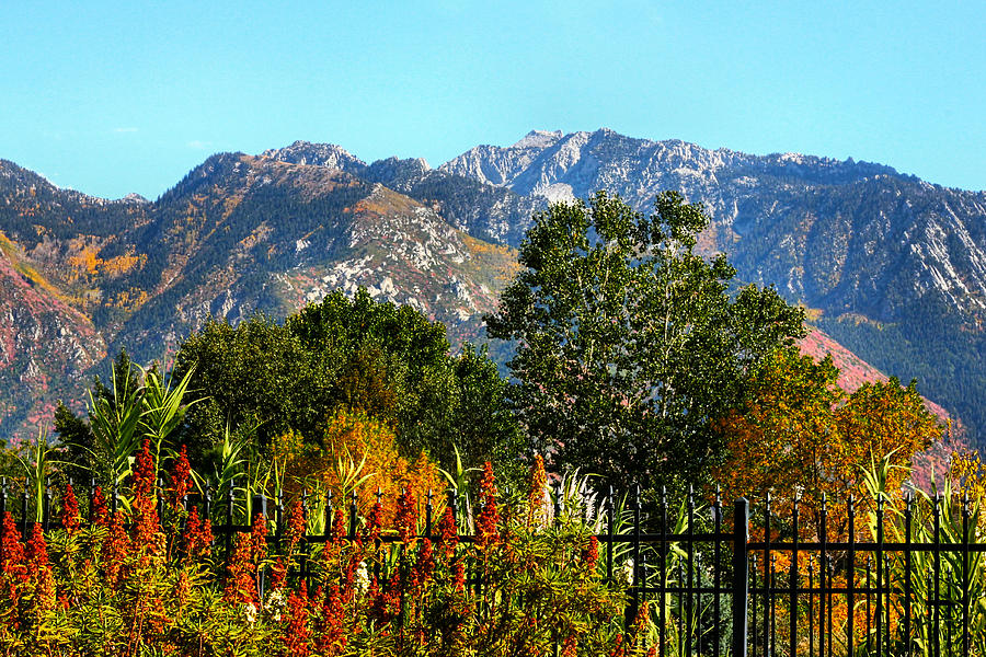 Wasatch Mountains In Autumn Photograph