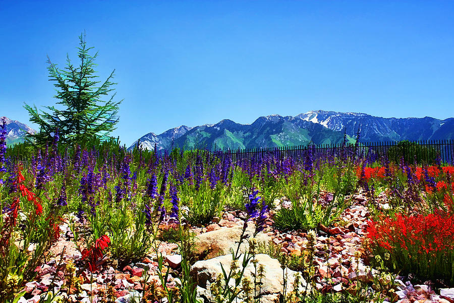 Wasatch Mountains In Spring Photograph  - Wasatch Mountains In Spring Fine Art Print