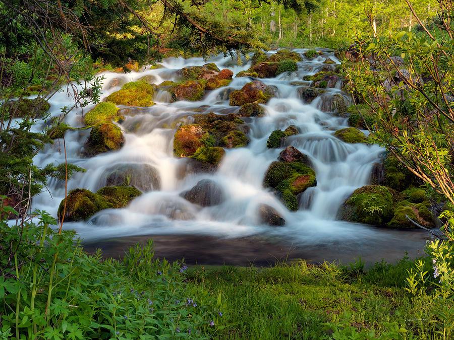 Wasatch Range Cascade Photograph