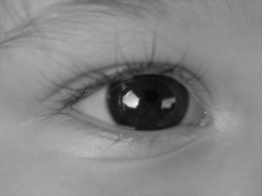 Watching You ...  Photograph