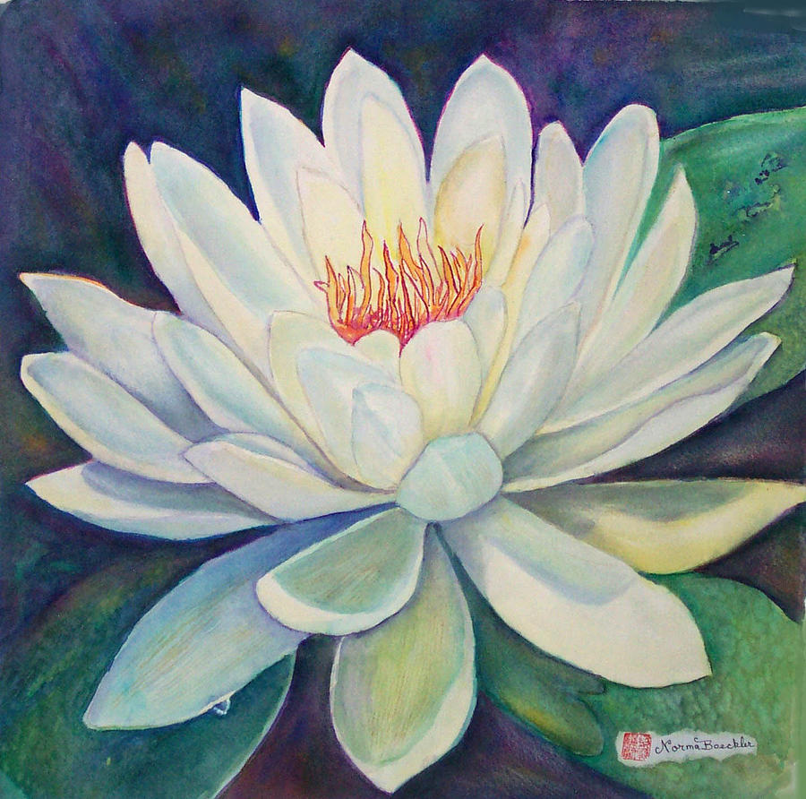 Water Lily Painting by Norma Boeckler