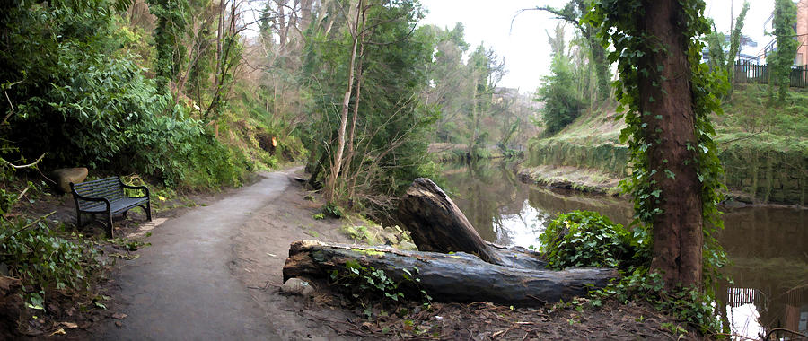 Water Of Leith Photograph