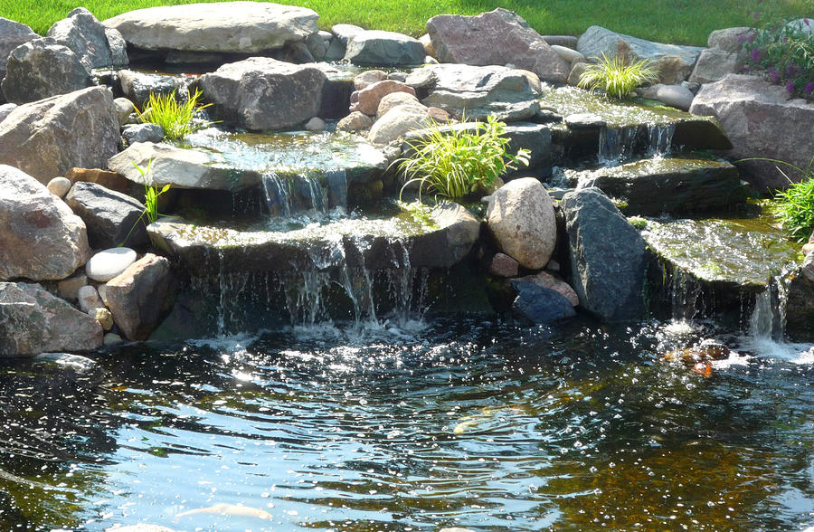 Waterfall koi pond by stephanie campbell for Stone koi pond