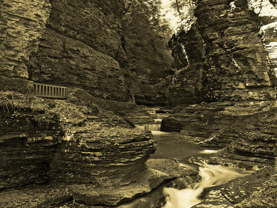 Watkins Glen In Orotone Photograph  - Watkins Glen In Orotone Fine Art Print