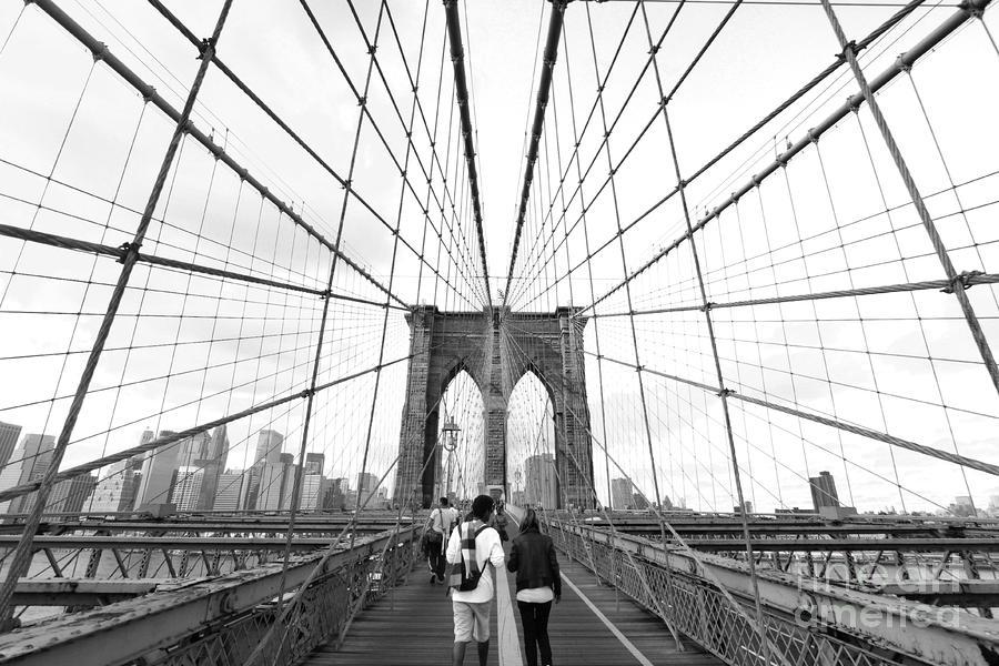 Web Of Love Photograph