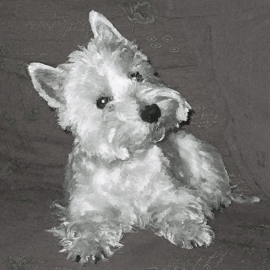West Highland White Terrier Digital Art  - West Highland White Terrier Fine Art Print