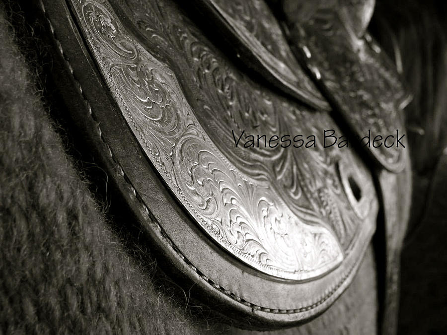 Western Saddle Photograph