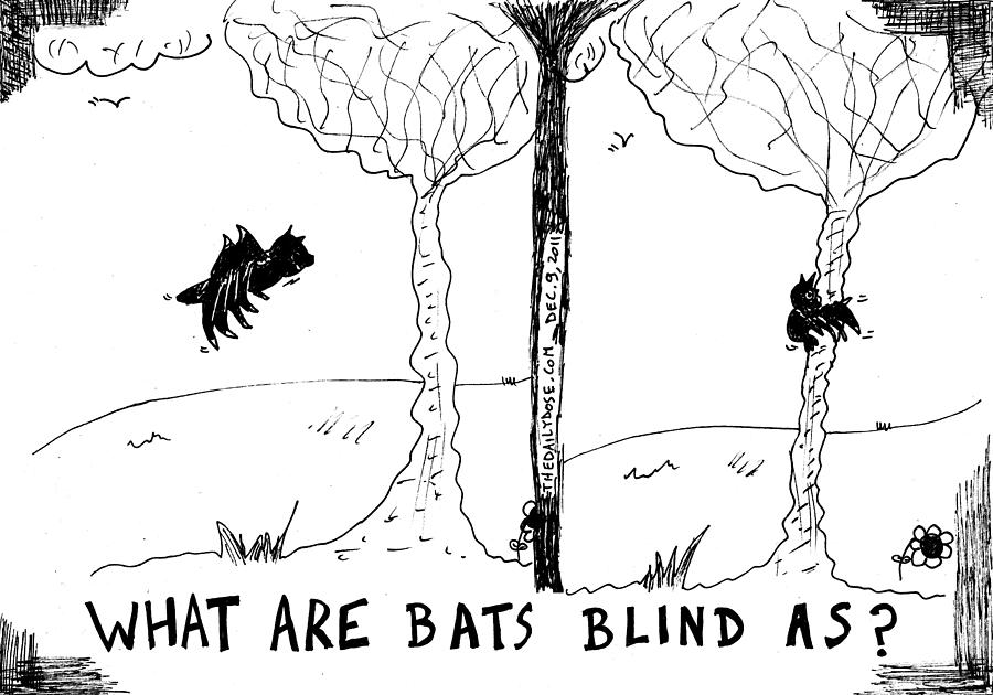 What Are Bats Blind As Cartoon Drawing