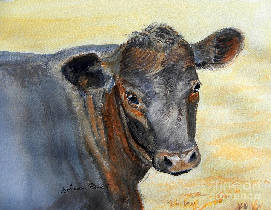Jersey-angus Cross Painting - What Color Cocoa by Susan  Clark