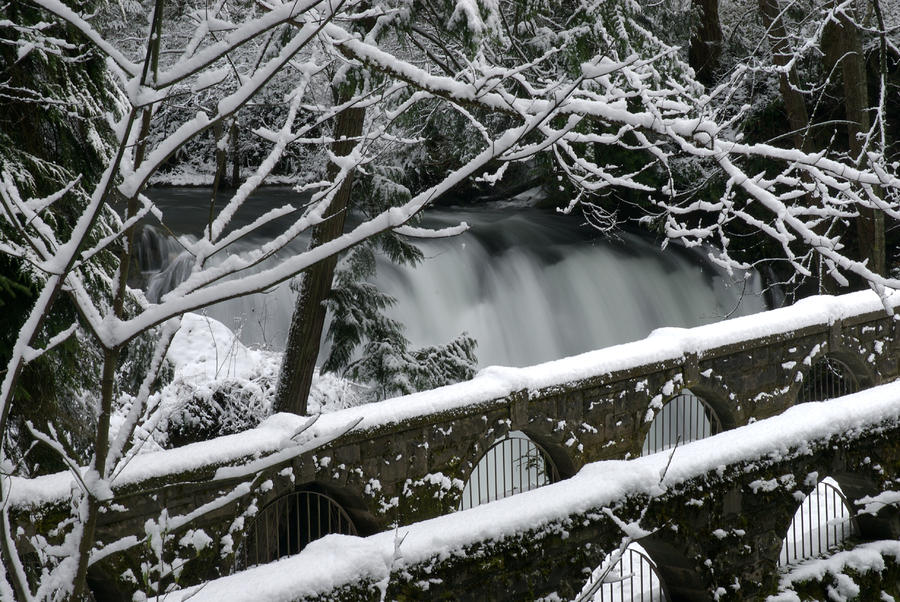 Whatcom Falls Winter 08 Photograph  - Whatcom Falls Winter 08 Fine Art Print