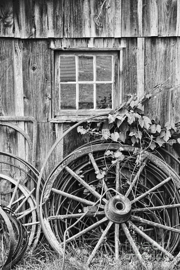 Wheels Wheels And More Wheels Photograph  - Wheels Wheels And More Wheels Fine Art Print