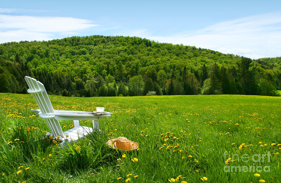 White Adirondack Chair In A Field Of Tall Grass Digital Art