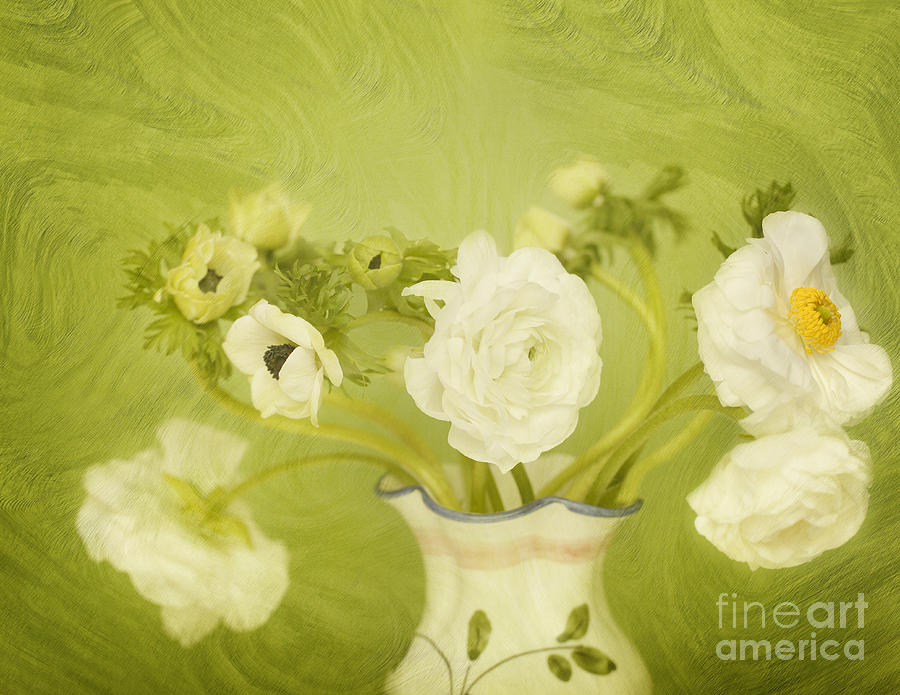 White Anemonies And Ranunculus On Green Photograph