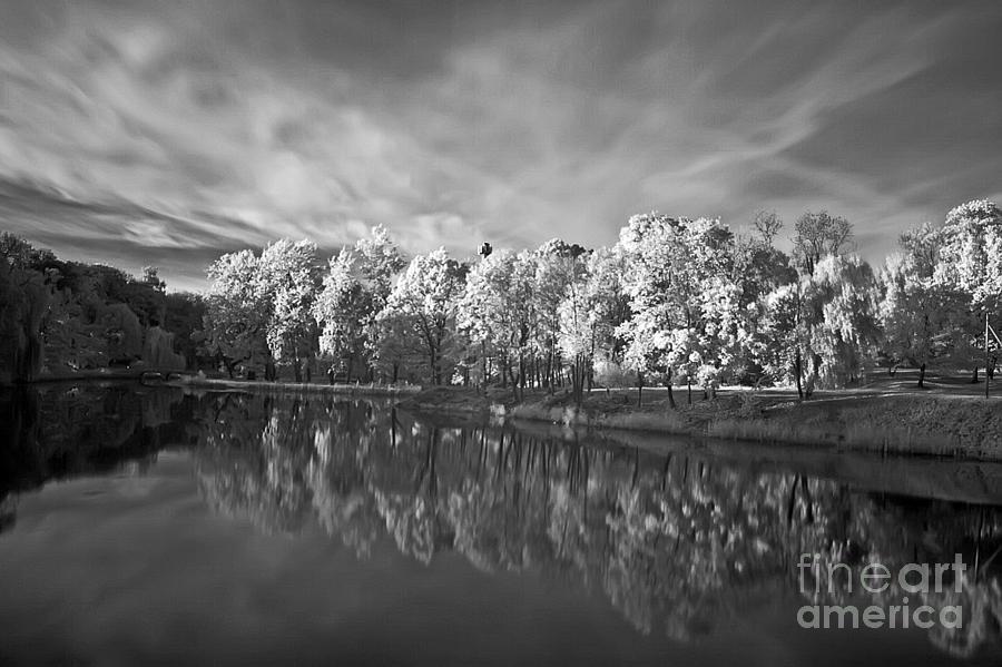 White Autumn Pyrography