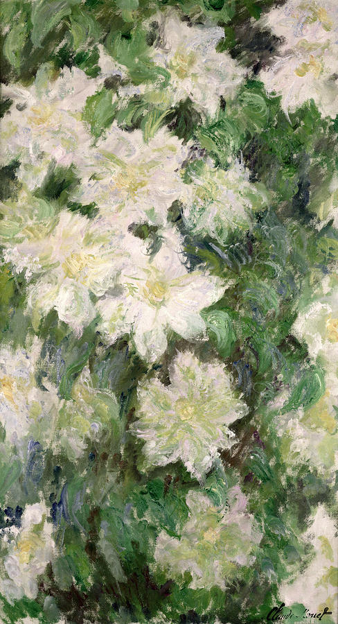 White Clematis Painting
