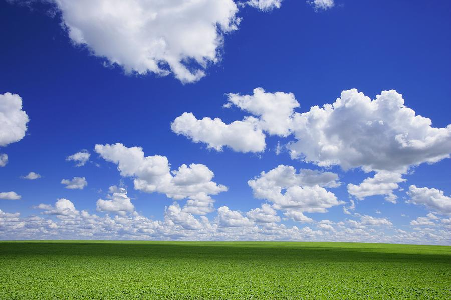 White Clouds In The Sky And Green Meadow Photograph