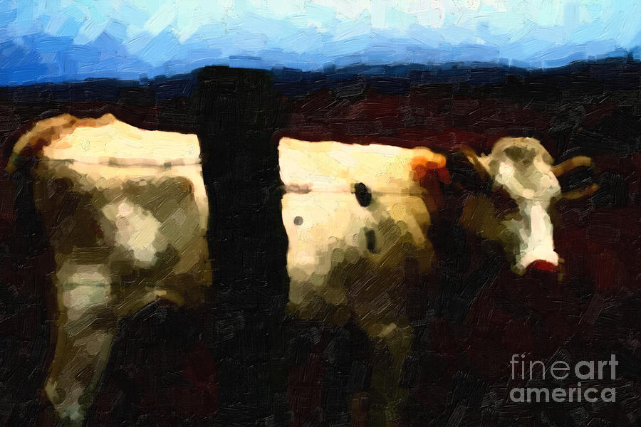 White Cow Behind Fence At Night Photograph