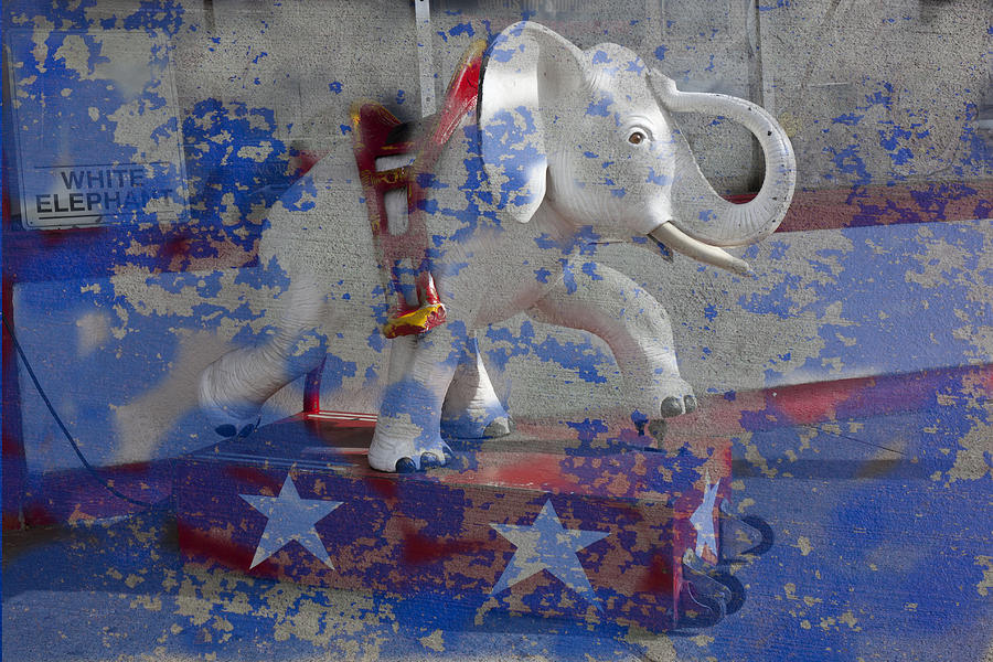 White Photograph - White Elephant Ride Abstract by Garry Gay