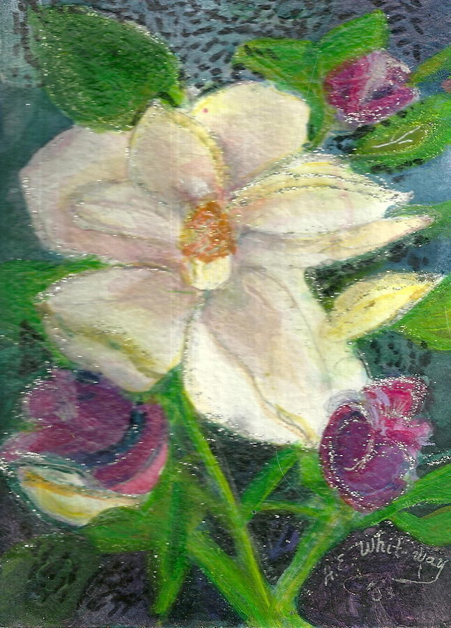 Flower Painting - White Happy Flower by Anne-Elizabeth Whiteway