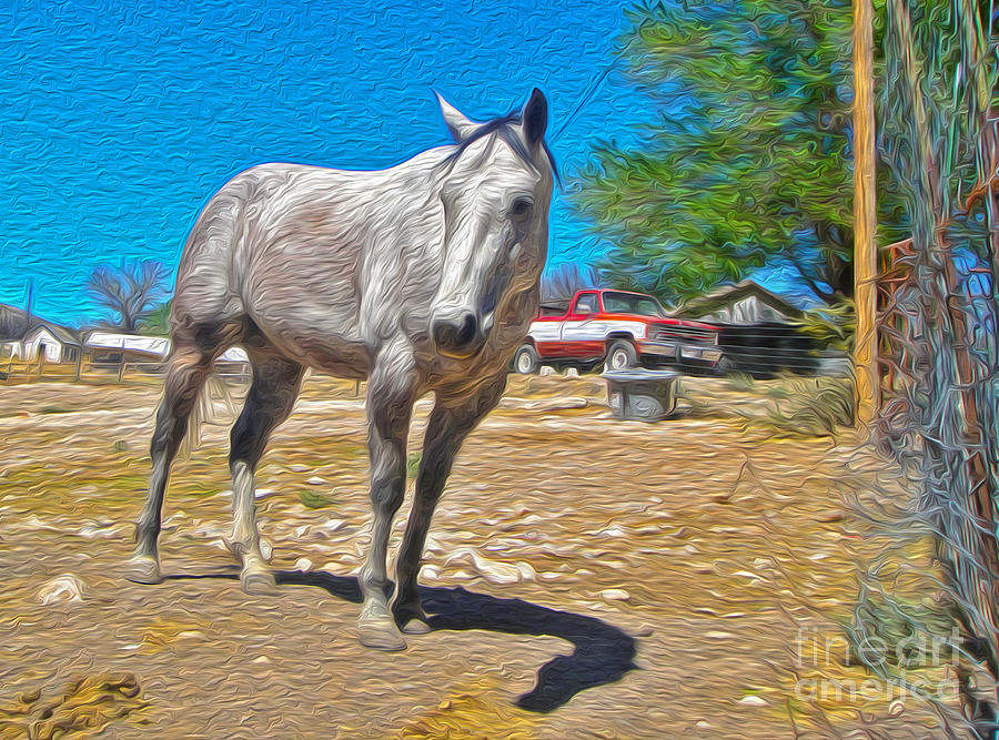 New Mexico Painting - White Horse by Gregory Dyer