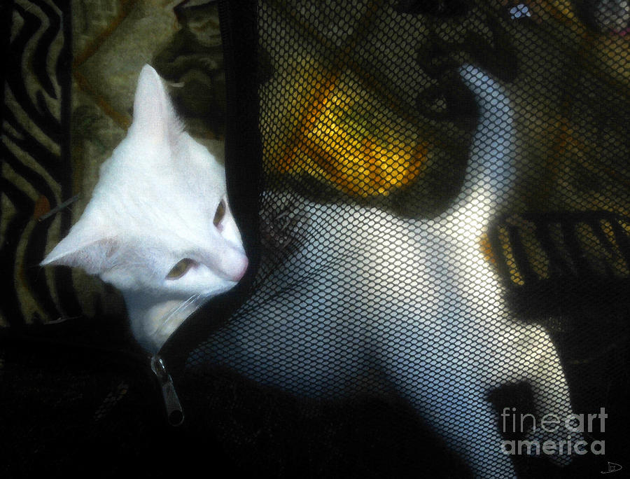 White Kitten Painting  - White Kitten Fine Art Print