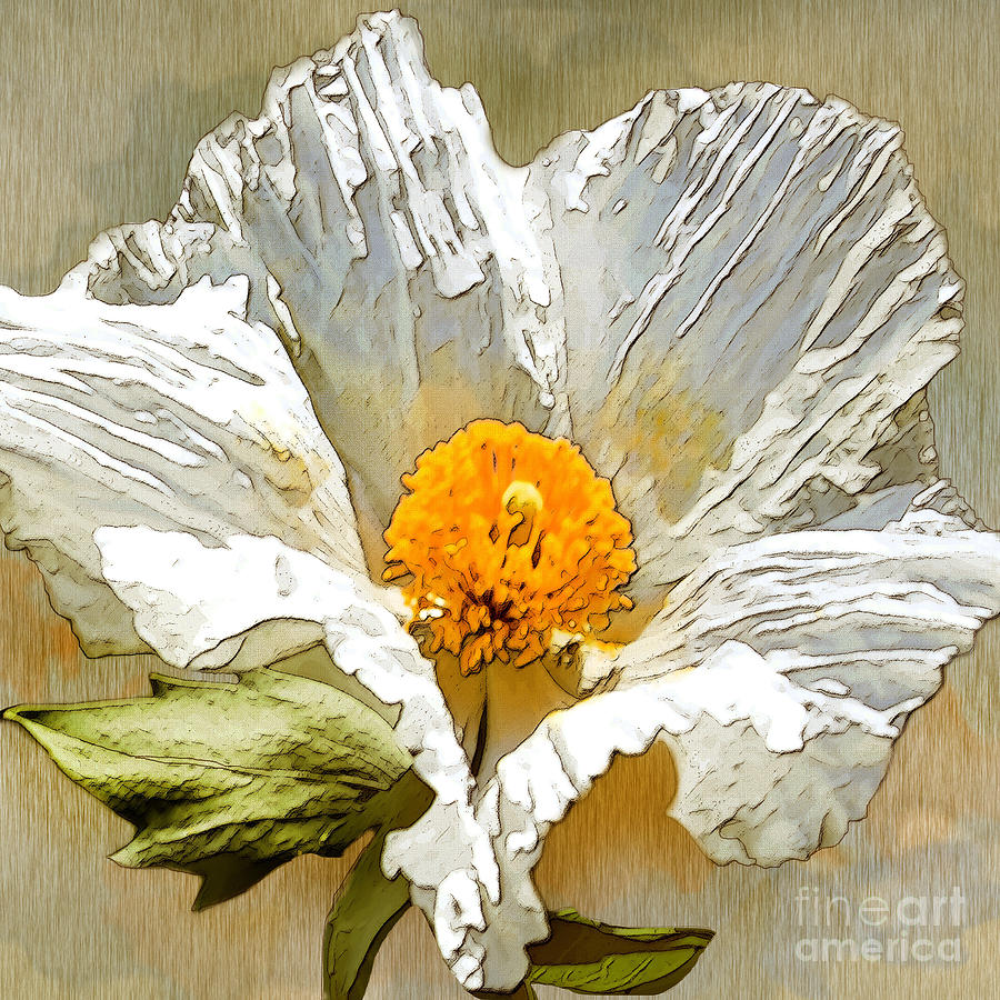 White Paper Flower Drawing  - White Paper Flower Fine Art Print