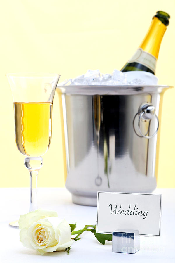White Rose And Champagne Photograph