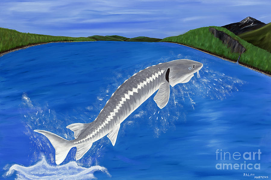 White Sturgeon - Monsters Of The Fraser River Painting