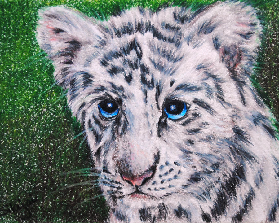 White Tiger Cub Painting