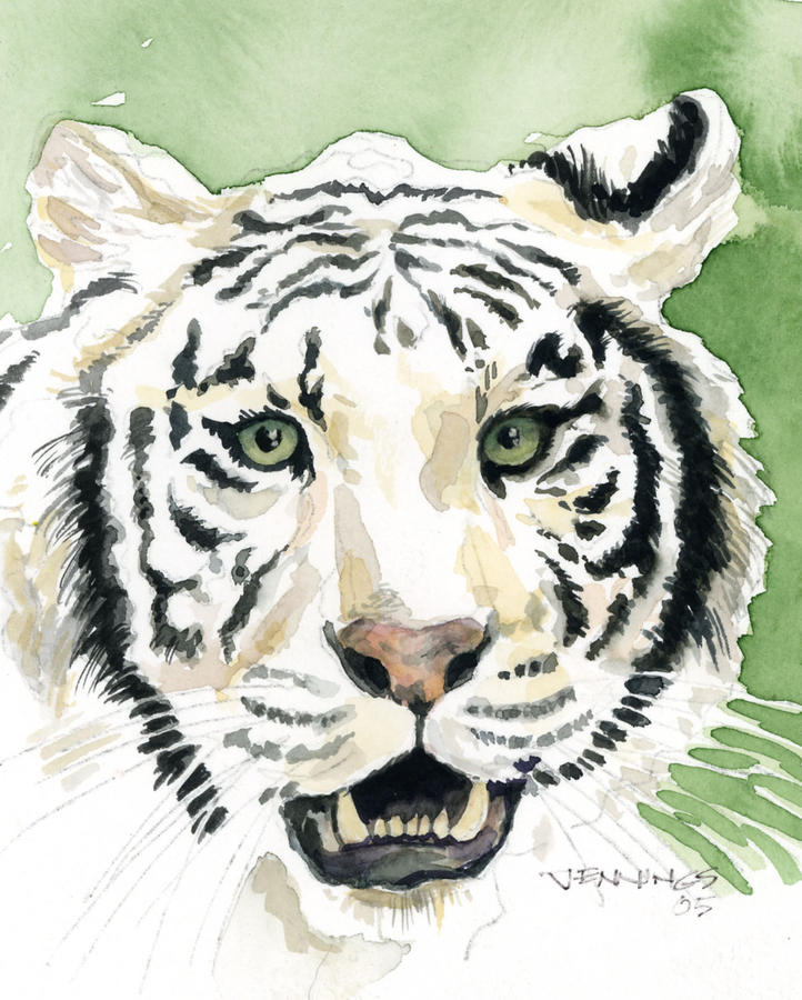 White Tiger Painting  - White Tiger Fine Art Print