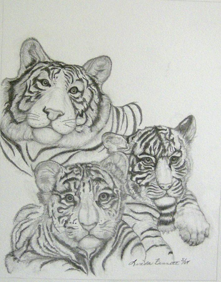 Tiger family drawing - photo#1
