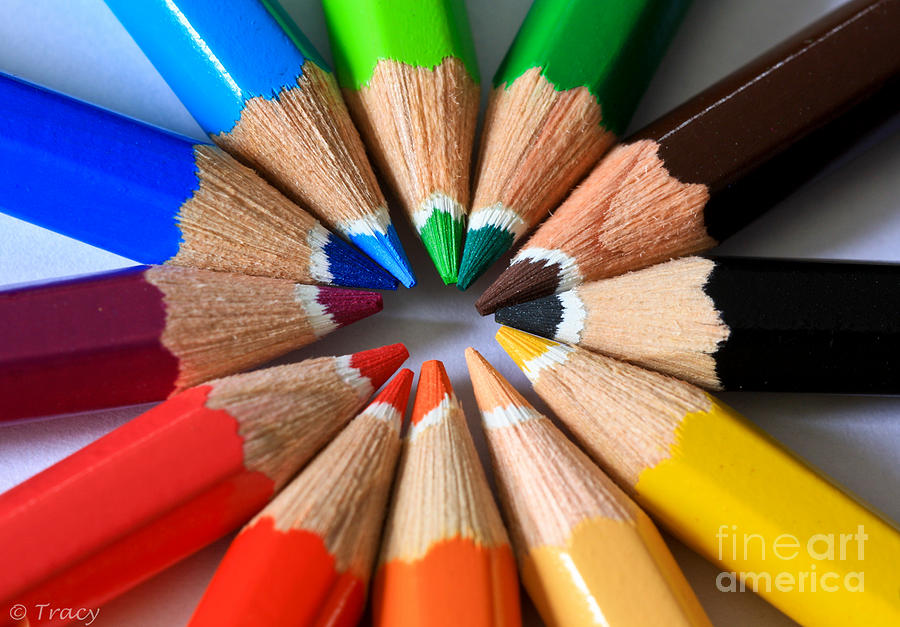 Pencils Photograph - White Tip Color Pencils by Tracy  Hall