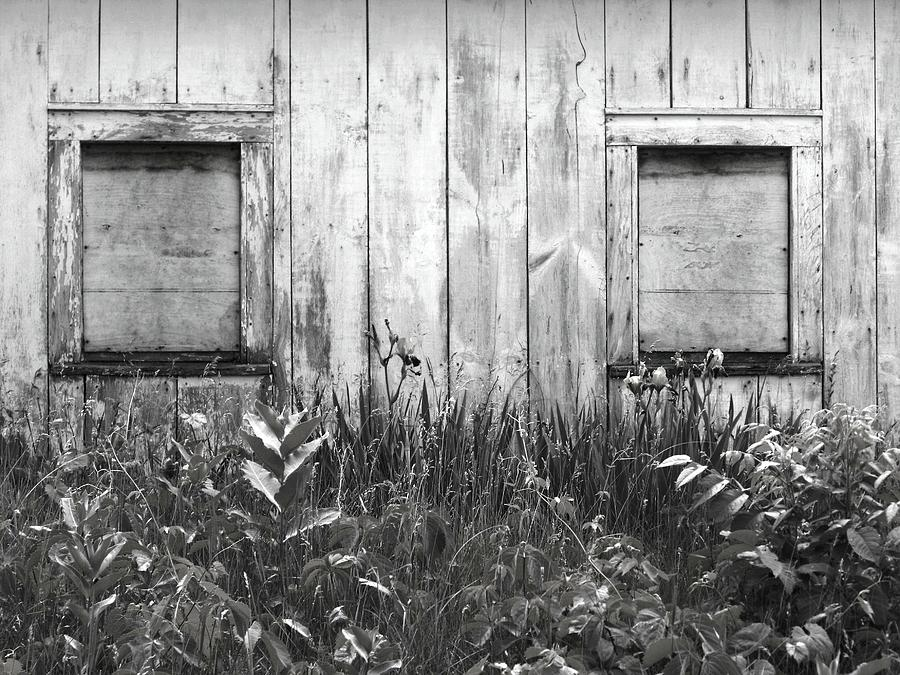 Rustic Photograph - White Windows by Anna Villarreal Garbis